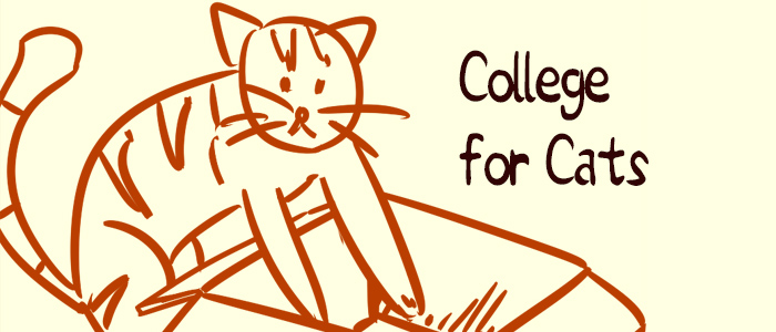 College for Cats banner, featuring a sleeping cat